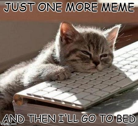 I'm Not Tired | JUST ONE MORE MEME AND THEN I'LL GO TO BED | image tagged in tired cat,memes,addicted,can't even,can't stop won't stop,funny cat | made w/ Imgflip meme maker