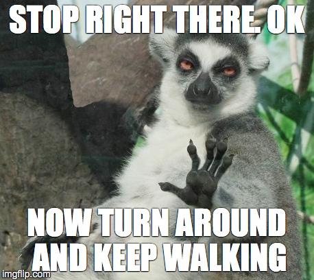 Stoner Lemur Meme