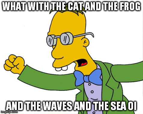 WHAT WITH THE CAT AND THE FROG AND THE WAVES AND THE SEA OI | made w/ Imgflip meme maker