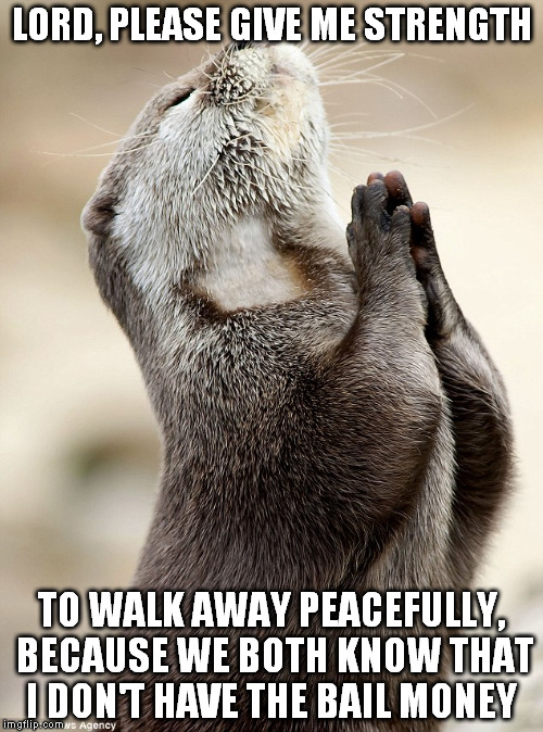 praying otter imgflip