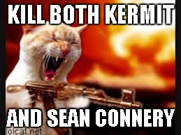 Cat Gone Crazy | KILL BOTH KERMIT AND SEAN CONNERY | image tagged in cat gone crazy | made w/ Imgflip meme maker