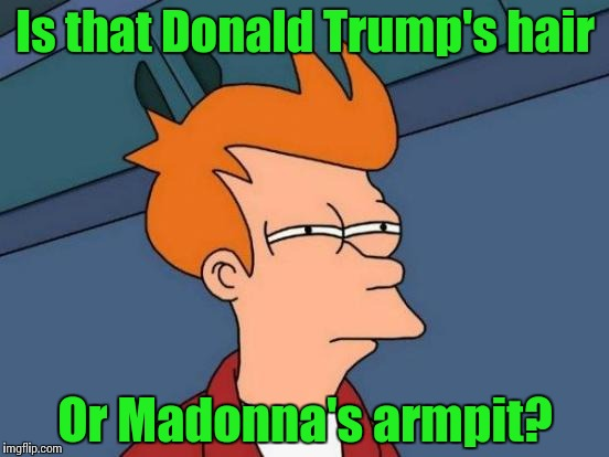 Futurama Fry Meme | Is that Donald Trump's hair Or Madonna's armpit? | image tagged in memes,futurama fry | made w/ Imgflip meme maker