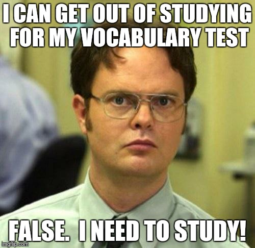 False | I CAN GET OUT OF STUDYING FOR MY VOCABULARY TEST FALSE.  I NEED TO STUDY! | image tagged in false | made w/ Imgflip meme maker