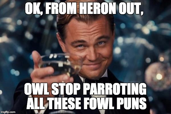 Leonardo Dicaprio Cheers Meme | OK, FROM HERON OUT, OWL STOP PARROTING ALL THESE FOWL PUNS | image tagged in memes,leonardo dicaprio cheers | made w/ Imgflip meme maker