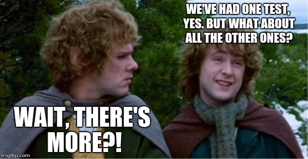 When finals time rolls around | WE'VE HAD ONE TEST, YES. BUT WHAT ABOUT ALL THE OTHER ONES? WAIT, THERE'S MORE?! | image tagged in merry and pippin,school,lord of the rings,test | made w/ Imgflip meme maker