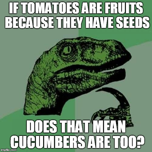 Philosoraptor Meme | IF TOMATOES ARE FRUITS BECAUSE THEY HAVE SEEDS DOES THAT MEAN CUCUMBERS ARE TOO? | image tagged in memes,philosoraptor | made w/ Imgflip meme maker