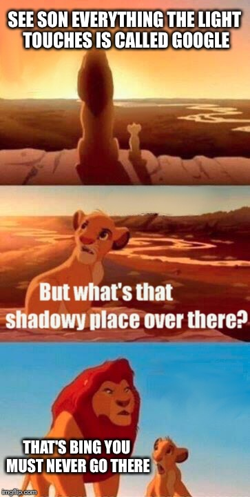 Simba Shadowy Place Meme | SEE SON EVERYTHING THE LIGHT TOUCHES IS CALLED GOOGLE THAT'S BING YOU MUST NEVER GO THERE | image tagged in memes,simba shadowy place | made w/ Imgflip meme maker