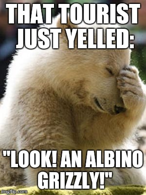 "Facepalm Bear | THAT TOURIST JUST YELLED: ""LOOK! AN ALBINO GRIZZLY!"" 