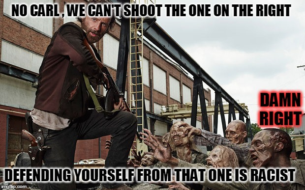 after zombie  | NO CARL , WE CAN'T SHOOT THE ONE ON THE RIGHT DEFENDING YOURSELF FROM THAT ONE IS RACIST DAMN RIGHT | image tagged in i'm not saying i hate you | made w/ Imgflip meme maker