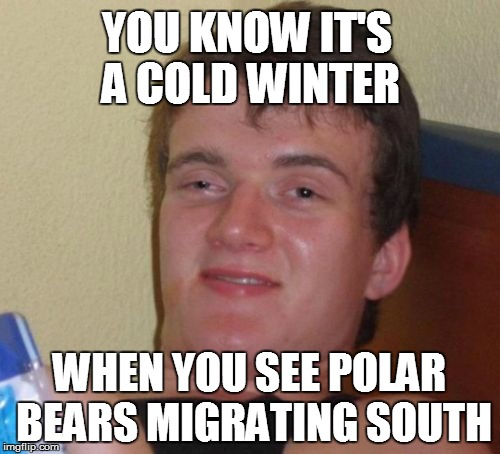 10 Guy Meme | YOU KNOW IT'S A COLD WINTER WHEN YOU SEE POLAR BEARS MIGRATING SOUTH | image tagged in memes,10 guy | made w/ Imgflip meme maker