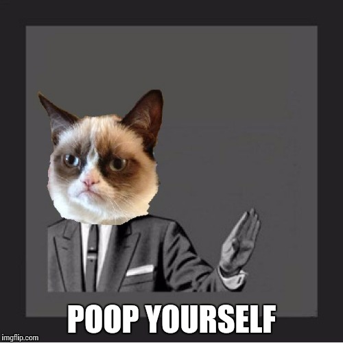 Grumpy cat kill yourself | POOP YOURSELF | image tagged in grumpy cat kill yourself | made w/ Imgflip meme maker