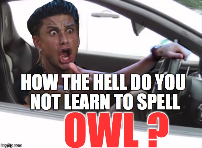 HOW THE HELL DO YOU NOT LEARN TO SPELL OWL ? | made w/ Imgflip meme maker