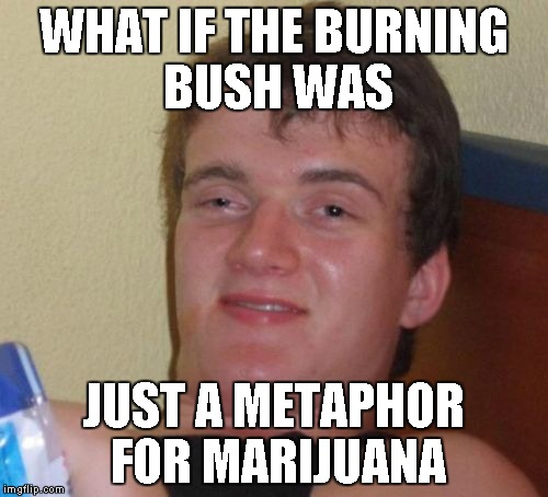 10 Guy Meme | WHAT IF THE BURNING BUSH WAS JUST A METAPHOR FOR MARIJUANA | image tagged in memes,10 guy | made w/ Imgflip meme maker