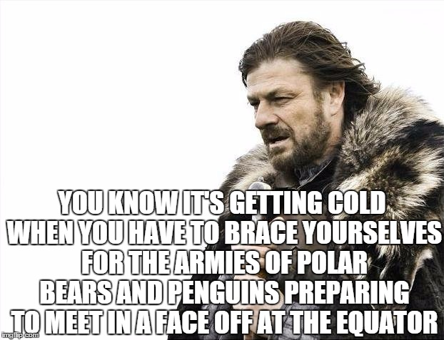 Brace Yourselves X is Coming Meme | YOU KNOW IT'S GETTING COLD WHEN YOU HAVE TO BRACE YOURSELVES FOR THE ARMIES OF POLAR BEARS AND PENGUINS PREPARING TO MEET IN A FACE OFF AT T | image tagged in memes,brace yourselves x is coming | made w/ Imgflip meme maker