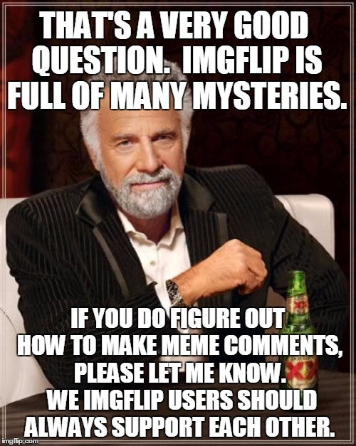 The Most Interesting Man In The World Meme | THAT'S A VERY GOOD QUESTION.  IMGFLIP IS FULL OF MANY MYSTERIES. IF YOU DO FIGURE OUT HOW TO MAKE MEME COMMENTS, PLEASE LET ME KNOW.  WE IMG | image tagged in memes,the most interesting man in the world | made w/ Imgflip meme maker