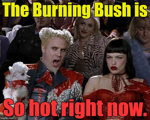 So hot right now | The Burning Bush is So hot right now. | image tagged in so hot right now | made w/ Imgflip meme maker