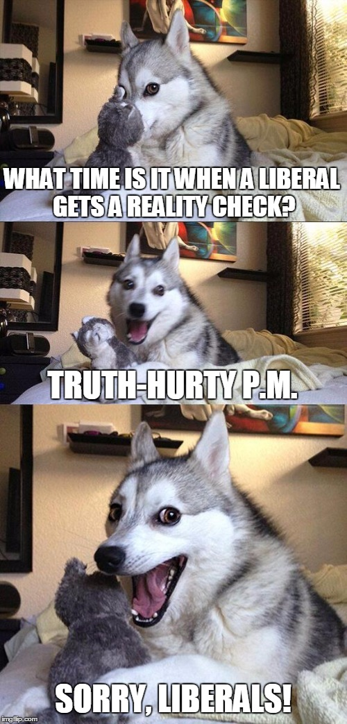 Bad Pun Dog Meme | WHAT TIME IS IT WHEN A LIBERAL GETS A REALITY CHECK? TRUTH-HURTY P.M. SORRY, LIBERALS! | image tagged in memes,bad pun dog | made w/ Imgflip meme maker