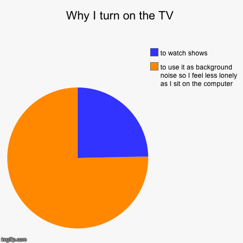 Why I turn on the TV | to use it as background noise so I feel less lonely as I sit on the computer, to watch shows | image tagged in funny,pie charts | made w/ Imgflip pie chart maker