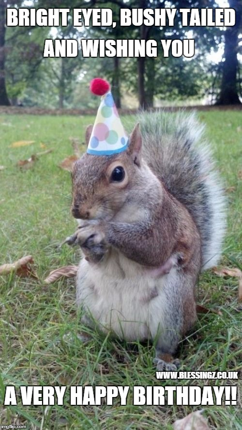Super Birthday Squirrel | BRIGHT EYED, BUSHY TAILED AND WISHING YOU A VERY HAPPY BIRTHDAY!! WWW.BLESSINGZ.CO.UK | image tagged in memes,super birthday squirrel | made w/ Imgflip meme maker