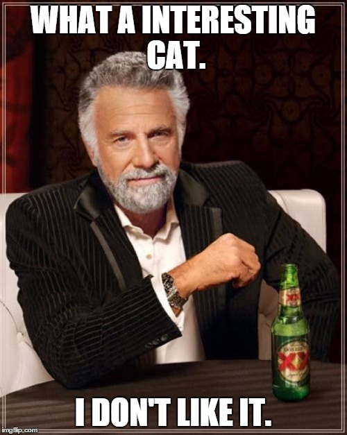 The Most Interesting Man In The World Meme | WHAT A INTERESTING CAT. I DON'T LIKE IT. | image tagged in memes,the most interesting man in the world | made w/ Imgflip meme maker