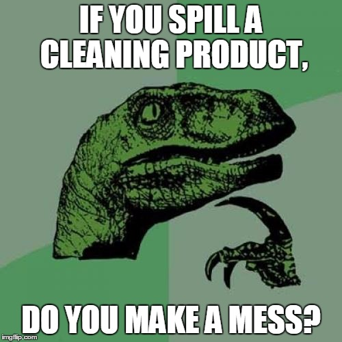 Philosoraptor Meme | IF YOU SPILL A CLEANING PRODUCT, DO YOU MAKE A MESS? | image tagged in memes,philosoraptor | made w/ Imgflip meme maker