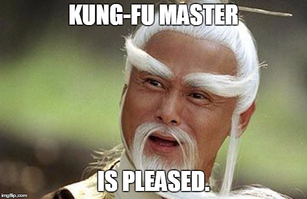 Kung-Fu Master | KUNG-FU MASTER IS PLEASED. | image tagged in kung fu | made w/ Imgflip meme maker