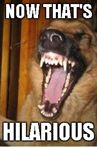 Laughing Dog | NOW THAT'S HILARIOUS | image tagged in laughing dog | made w/ Imgflip meme maker