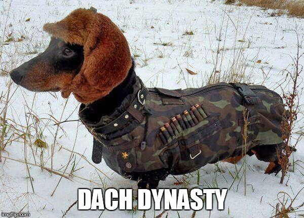 DACH DYNASTY | image tagged in duck dynasty,dachshunds | made w/ Imgflip meme maker