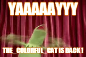 THE_COLORFUL_CAT IS BACK ! | made w/ Imgflip meme maker