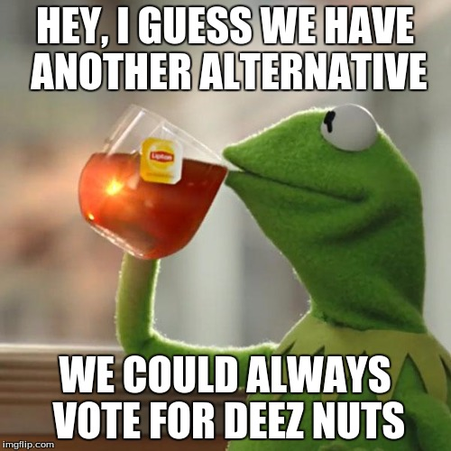 But Thats None Of My Business Meme | HEY, I GUESS WE HAVE ANOTHER ALTERNATIVE WE COULD ALWAYS VOTE FOR DEEZ NUTS | image tagged in memes,but thats none of my business,kermit the frog | made w/ Imgflip meme maker