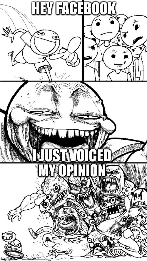 Hey Internet Meme | HEY FACEBOOK I JUST VOICED MY OPINION | image tagged in memes,hey internet | made w/ Imgflip meme maker