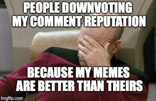 Captain Picard Facepalm Meme | PEOPLE DOWNVOTING MY COMMENT REPUTATION BECAUSE MY MEMES ARE BETTER THAN THEIRS | image tagged in memes,captain picard facepalm | made w/ Imgflip meme maker