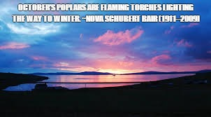 OCTOBER'S POPLARS ARE FLAMING TORCHES LIGHTING THE WAY TO WINTER. ~NOVA SCHUBERT BAIR (1911–2009) | image tagged in sunset,october,winter | made w/ Imgflip meme maker