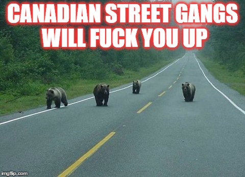 Canadian Street Gangs | CANADIAN STREET GANGS WILL F**K YOU UP | image tagged in canadian street gangs | made w/ Imgflip meme maker
