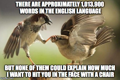 shut up bird | THERE ARE APPROXIMATELY 1,013,900 WORDS IN THE ENGLISH LANGUAGE BUT NONE OF THEM COULD EXPLAIN HOW MUCH I WANT TO HIT YOU IN THE FACE WITH A | image tagged in bird,shut up | made w/ Imgflip meme maker