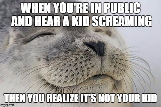 Satisfied Seal Meme | WHEN YOU'RE IN PUBLIC AND HEAR A KID SCREAMING THEN YOU REALIZE IT'S NOT YOUR KID | image tagged in memes,satisfied seal,AdviceAnimals | made w/ Imgflip meme maker