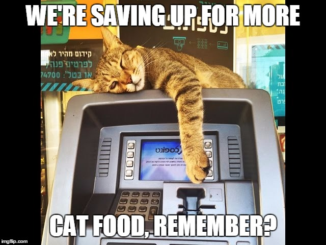 WE'RE SAVING UP FOR MORE CAT FOOD, REMEMBER? | made w/ Imgflip meme maker