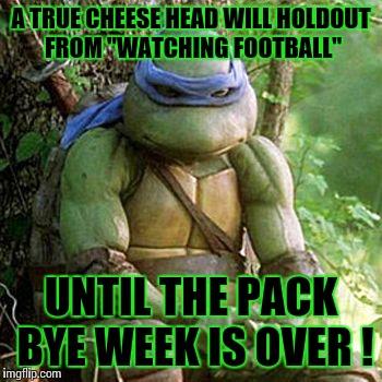 t2bf8 ninja turtle imgflip,Turtle Meme Generator