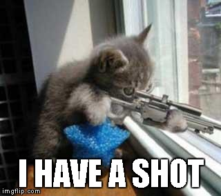 Cat Sniper | I HAVE A SHOT | image tagged in cat sniper | made w/ Imgflip meme maker