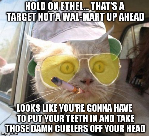 Fear And Loathing Cat | HOLD ON ETHEL... THAT'S A TARGET NOT A WAL-MART UP AHEAD LOOKS LIKE YOU'RE GONNA HAVE TO PUT YOUR TEETH IN AND TAKE THOSE DAMN CURLERS OFF Y | image tagged in memes,fear and loathing cat | made w/ Imgflip meme maker