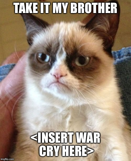 Grumpy Cat Meme | TAKE IT MY BROTHER <INSERT WAR CRY HERE> | image tagged in memes,grumpy cat | made w/ Imgflip meme maker