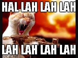 Cat Gone Crazy | HAL LAH LAH LAH LAH LAH LAH LAH | image tagged in cat gone crazy | made w/ Imgflip meme maker