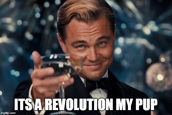 ITS A REVOLUTION MY PUP | image tagged in memes,leonardo dicaprio cheers | made w/ Imgflip meme maker