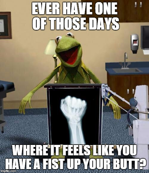 Kermit | EVER HAVE ONE OF THOSE DAYS WHERE IT FEELS LIKE YOU HAVE A FIST UP YOUR BUTT? | image tagged in kermit the frog,xray | made w/ Imgflip meme maker