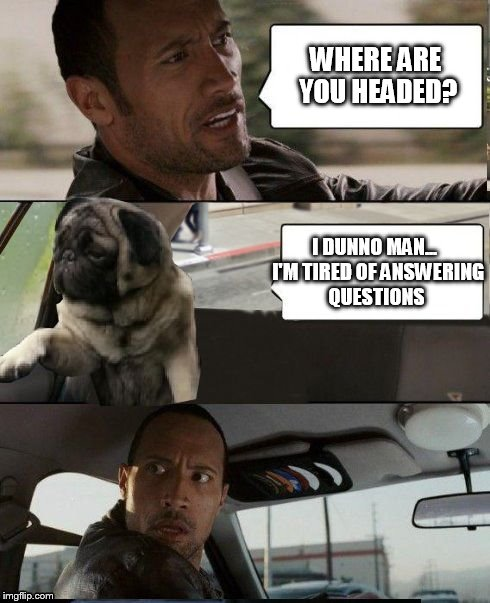 The Rock driving | WHERE ARE YOU HEADED? I DUNNO MAN...  I'M TIRED OF ANSWERING QUESTIONS | image tagged in rock driving pug,the rock driving,introspective pug,memes | made w/ Imgflip meme maker