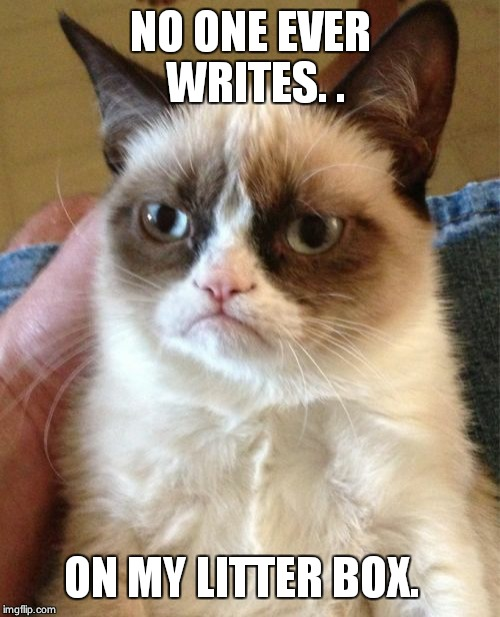 Grumpy Cat Meme | NO ONE EVER WRITES. . ON MY LITTER BOX. | image tagged in memes,grumpy cat | made w/ Imgflip meme maker
