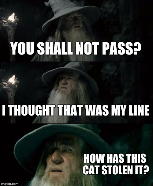 Confused Gandalf Meme | YOU SHALL NOT PASS? I THOUGHT THAT WAS MY LINE HOW HAS THIS CAT STOLEN IT? | image tagged in memes,confused gandalf | made w/ Imgflip meme maker