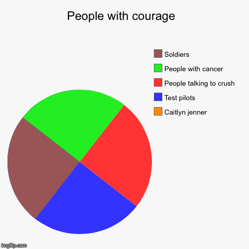 People with courage  | Caitlyn jenner, Test pilots , People talking to crush, People with cancer, Soldiers | image tagged in funny,pie charts | made w/ Imgflip pie chart maker