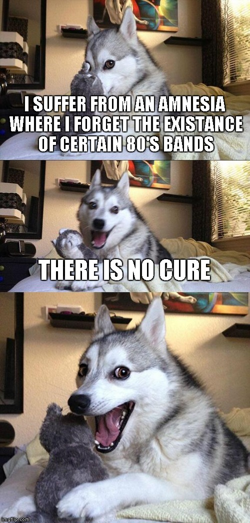 I'm guessing only people of a certain age will even get this joke. | I SUFFER FROM AN AMNESIA WHERE I FORGET THE EXISTANCE OF CERTAIN 80'S BANDS THERE IS NO CURE | image tagged in memes,bad pun dog | made w/ Imgflip meme maker