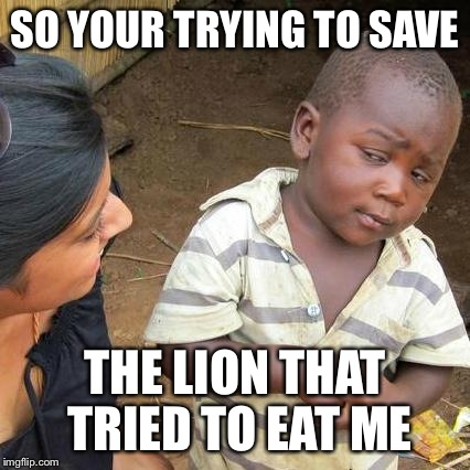 Third World Skeptical Kid | SO YOUR TRYING TO SAVE THE LION THAT TRIED TO EAT ME | image tagged in memes,third world skeptical kid | made w/ Imgflip meme maker
